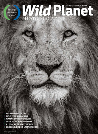 WildPlanet_issue-21